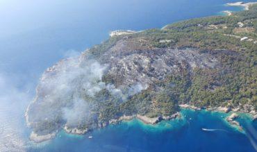 Incendi: in fiamme i parchi d'Italia. Roghi sul Gargano, in Campania e in Calabria